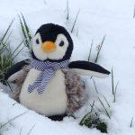linux-yeni-baslayanlar-tavsiye