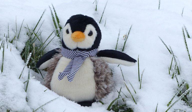 Linux' a Yeni Başlayanların Bilmesi Gereken 10 Şey
